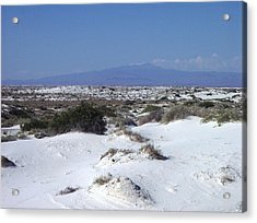 Austere Landscape  Acrylic Print by The GYPSY And DEBBIE