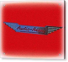 Austin-healey Acrylic Print