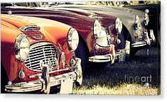 Austin-healey Times Three Acrylic Print