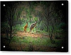 Australia, New South Wales, Broken Acrylic Print by Rona Schwarz
