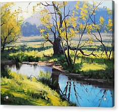 Australian River Painting Acrylic Print by Graham Gercken