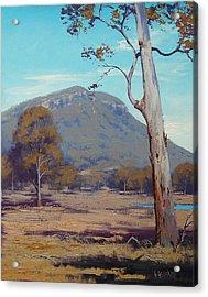 Australian Summer Landscape Acrylic Print by Graham Gercken