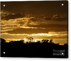 Australian Sunrise Acrylic Print by Bev Conover
