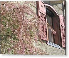 Austrian Spring Acrylic Print by Ann Horn