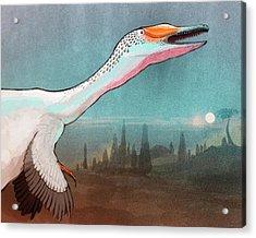 Austroraptor Dinosaur Acrylic Print