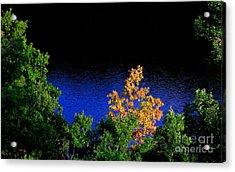 Autumn 5 Acrylic Print by Vassilis Tagoudis