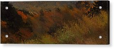 Autumn Abstract Acrylic Print by Dan Sproul