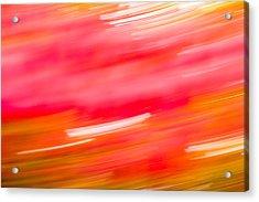 Autumn Abstract Acrylic Print by Shane Holsclaw