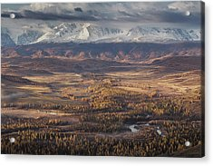 Autumn Altai Mountains Acrylic Print by Dmitry Kupratsevich