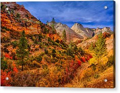 Autumn Arroyo Acrylic Print