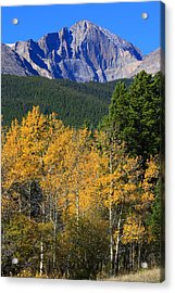 Autumn Aspens And Longs Peak Acrylic Print