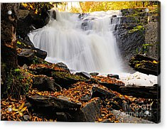 Autumn At Cattyman Falls Acrylic Print by Larry Ricker