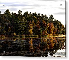 Autumn At It's Finest 2 Acrylic Print by Thomas Young