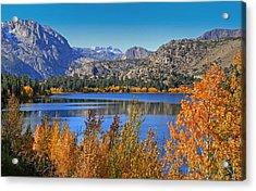 Autumn At June Lake Acrylic Print