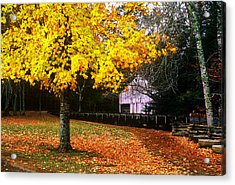 Acrylic Print featuring the photograph Autumn At Old Mill by Rodney Lee Williams