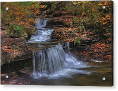 Autumn At Ricketts Glen Acrylic Print by Sharon Batdorf