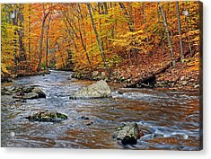 Autumn At The Black River Acrylic Print