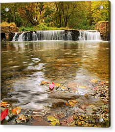 Autumn At Valley Creek Acrylic Print