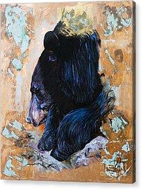 Autumn Bear Acrylic Print