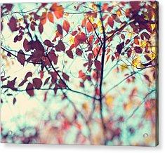 Autumn Beauty Acrylic Print by Kim Fearheiley