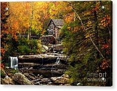 Autumn Bliss Acrylic Print