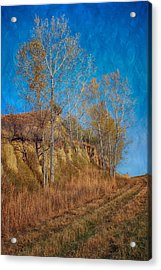 Autumn Bluff Painted Acrylic Print
