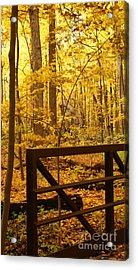 Autumn Bridge Iv Acrylic Print by Valerie Fuqua