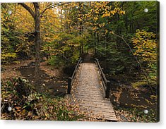 Acrylic Print featuring the photograph Autumn Bridges. by Chris Babcock
