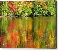 Autumn Brilliance Acrylic Print by Ann Horn