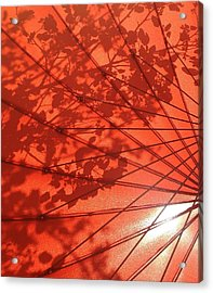 Autumn Butterfly Acrylic Print by Brenda Pressnall
