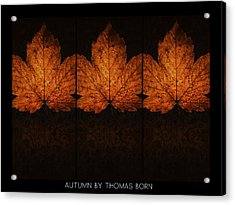 Autumn By Thomas Born Acrylic Print