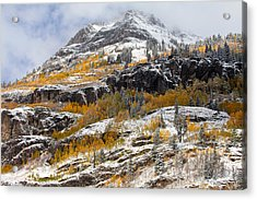 Autumn Clearning Acrylic Print by Darren  White