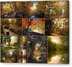 Autumn Collection Acrylic Print by Jessica Jenney