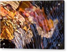 Autumn Color Beneath The Surface Acrylic Print