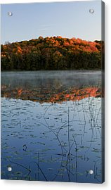 Autumn Color Forest Reflected In Grass Acrylic Print by Panoramic Images