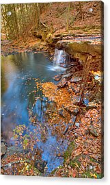 Autumn Color In Pond Acrylic Print