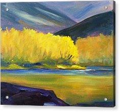 Autumn Color Acrylic Print by Nancy Merkle