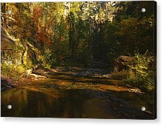 Autumn Colors By The Creek  Acrylic Print by Saija  Lehtonen