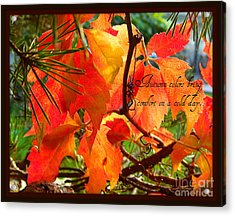 Acrylic Print featuring the photograph Autumn Colors by Heidi Manly