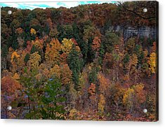 Acrylic Print featuring the photograph Autumn Colors In Taughannock State Park Ithaca New York by Paul Ge