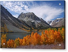 Autumn Colors In The Eastern Sierra's Lundy Canyon Acrylic Print