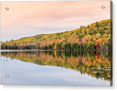 Acrylic Print featuring the photograph Autumn Colors  by Trace Kittrell