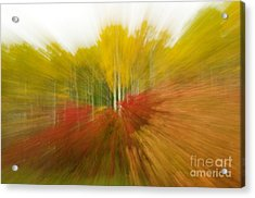 Autumn Colors Acrylic Print by Vivian Christopher