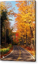 Autumn Country Road Acrylic Print by Joann Vitali