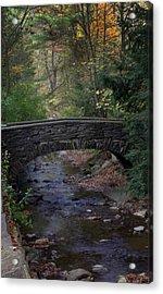 Autumn Creek Acrylic Print by J Allen