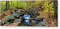 Autumn Creek Panorama With Yellow Maple Trees Acrylic Print
