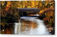 Autumn Crossing Acrylic Print by Jan Davies