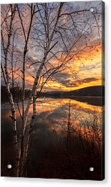 Autumn Dawn Acrylic Print by Bill Wakeley