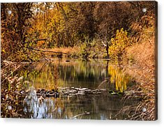Acrylic Print featuring the photograph Autumn Day by John Johnson