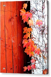 Autumn Days Acrylic Print